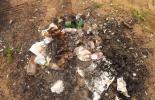 Кучи мусора на берегу карьера близ деревни Выстав